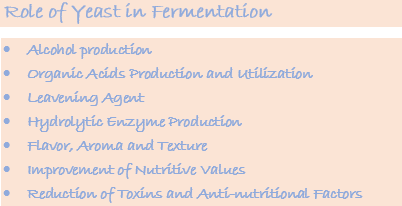 role of yeast in fermentation of alcohol